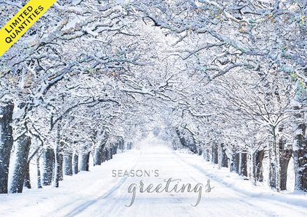 Crystal Lane Holiday Cards